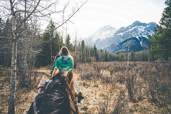 1 ora di corsa a cavallo in Kananaskis