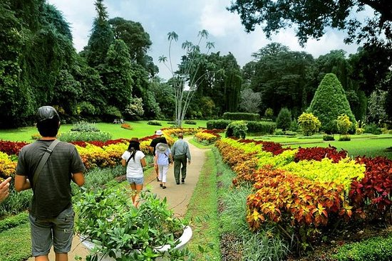 Private Kandy Tour by Air-Conditioned...