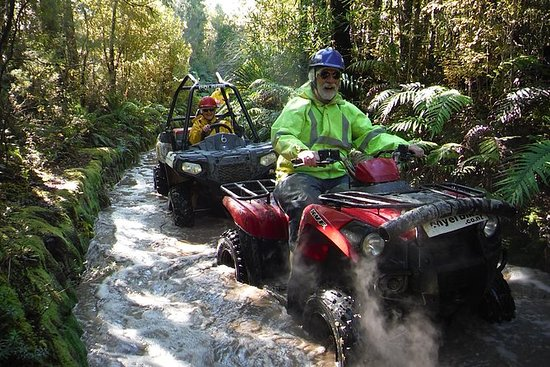 Quad Tour on the Enchanted Forest...