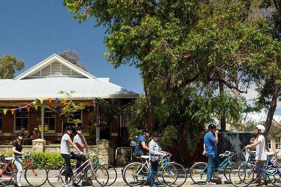 在我们的3小时自行车之旅中探索当地的Freo!
