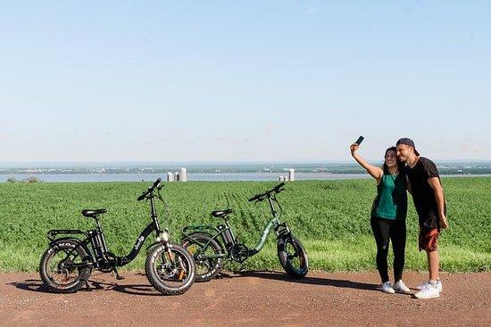 Alquiler de bicicletas eléctricas en...