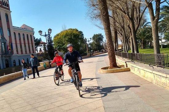 Tour à vélo et à tapas-apéritif dans...
