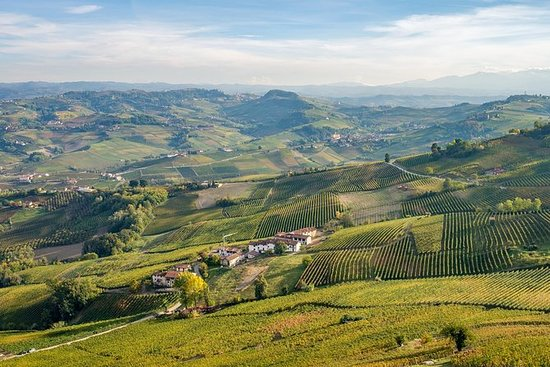 Barolo wine tour with Sommelier