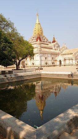 Ananda Phaya 🤩