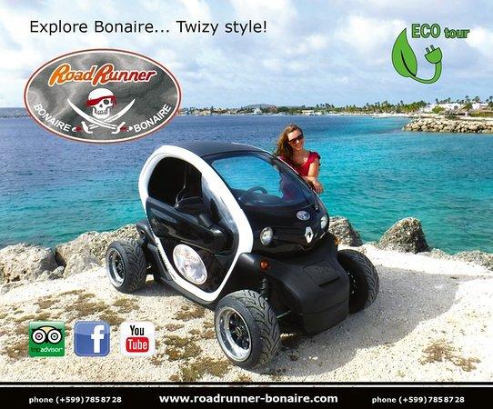 Roadrunner Bonaire