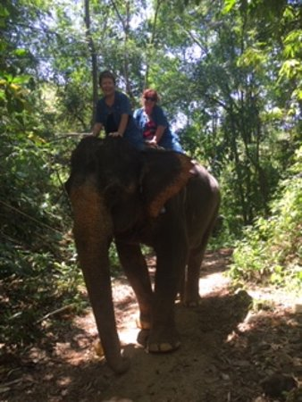 Phang Nga Elephant Park: Our trek up to the top of the hill...