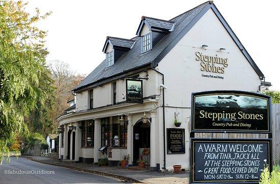 station pub box hill review of the stepping stones dorking rh tripadvisor co nz