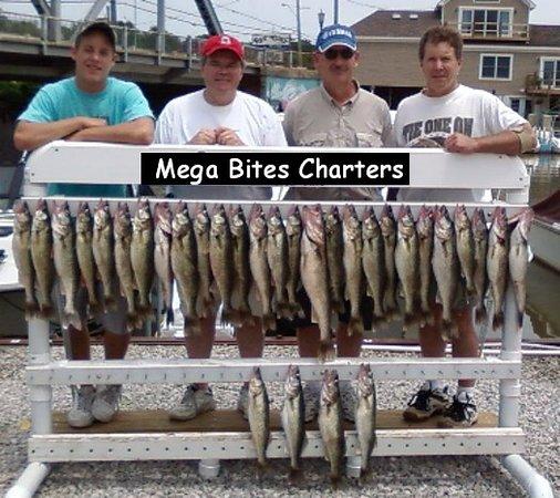 Mega Bites Charters
