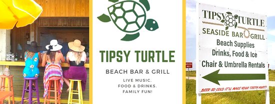 Tipsy Turtle!