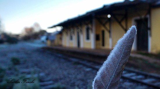 Sertao: Antiga Estação Ferroviária  A estação de Sertão foi aberta em 1910 pela Cie. Auxiliaire, pertencente a Linha Marcelino Ramos -Santa Maria.Trens de passageiros circularam até os anos 1980 pela linha.