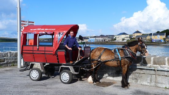 Pony and Trap Tours with John