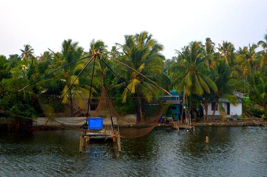 Kochi (Cochin), Indien: Kochi Beauty!!!!!