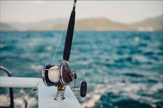 Marigot, Sint Maarten: We're looking forward to see you soon for a fishing trip!