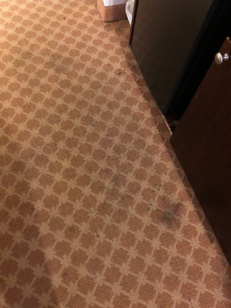 Country Inn & Suites by Radisson, Dothan, AL: Disgusting room carpet!