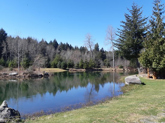 Seal Bay RV Park & Campground: Pond