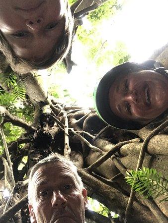 Great rainforest tour