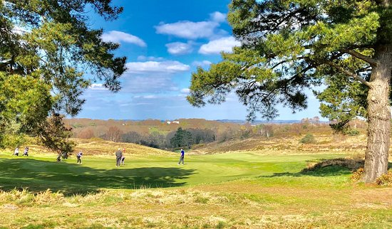 Another great society day at Broadstone in March in glorious sunshine.