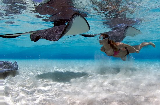 Aqua Watersports, Grand Cayman
