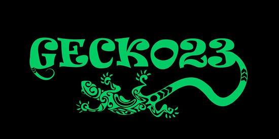 Gecko23