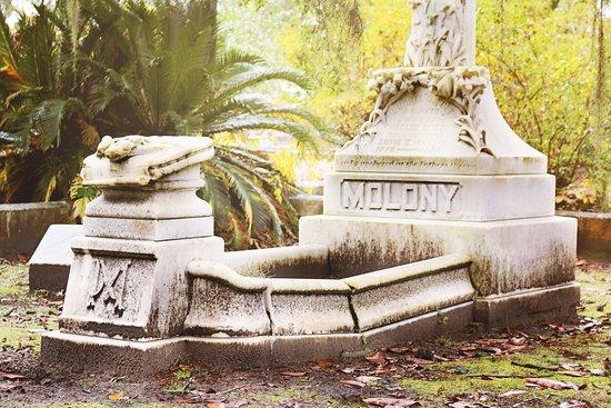 Bonaventure Cemetery Journeys by Alissa Lee Nicholson