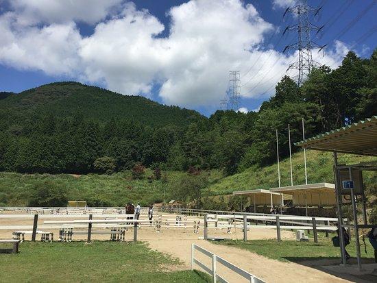 Horse Riding Club Crane Osaka