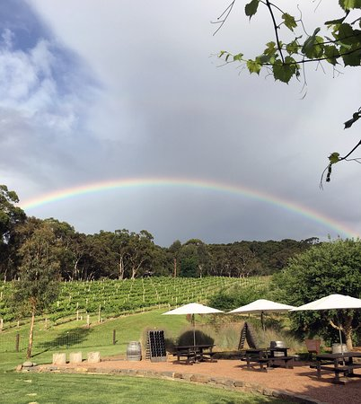 View from our tasting room deck.