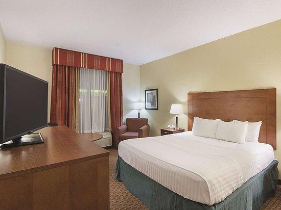 La Quinta Inn & Suites by Wyndham Dothan: Guest room