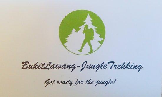Bukit Lawang Jungle Trekking Tours - Day Tours
