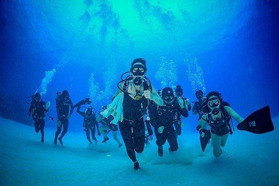NB Divers