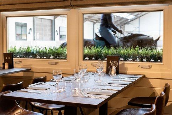 Eetcafé Hippodroom: Warm en gezellig ingericht, met zicht op de rijpistes, zowel binnen als vanuit de verwarmde veranda.