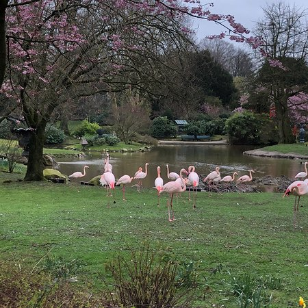 Tierpark Hagenbeck (Hamburg) - 2019 All You Need to Know ...