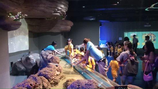 para staf di jakarta aquarium sangat friendly dengan anak-anak