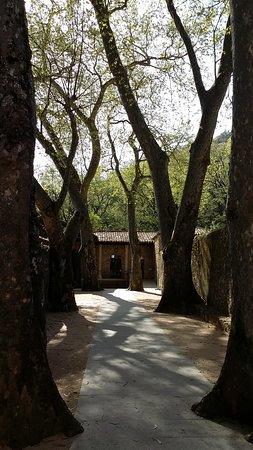 pasillo entrada, entre la tienda y el monasterio