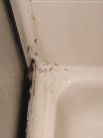 scum build up in shower