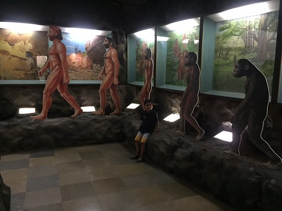 Great effort by the Govt Dept to bring this to the public. It's a work in progress and during our visit on 29 Mar 2019, saw many new exhibits being designed and executed a-la BNHS, Mumbai and Natural History Museum, NYC.