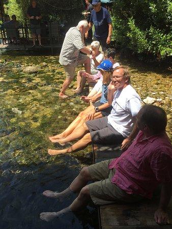 Niche Touring: nice break in a trout stream
