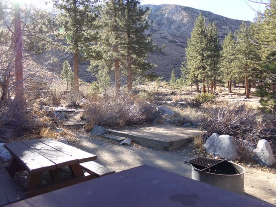 Big Pine, Californie : Campsite with provided picnic table, food storage, fire pit, and camping pad in the pines with mountain views.