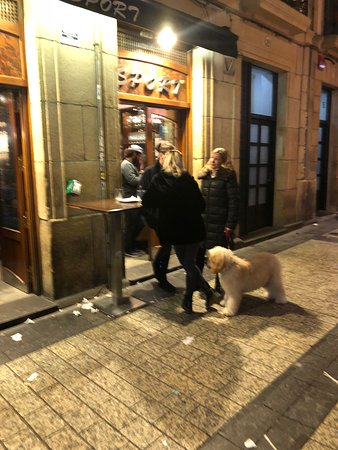 Bar sport in the night with the dog