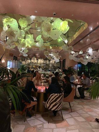 Flamingo Room By Tashas Dubai Updated 2019 Restaurant