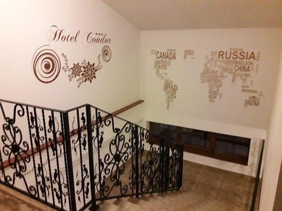 Hotel Condor: Hall