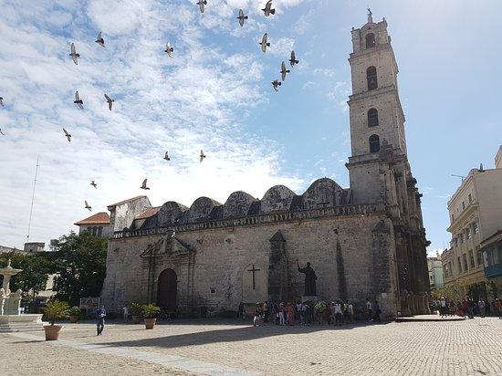 Convento de San Francisco de Asís, La Habana. Les mouettes étaient au rendez-vous...