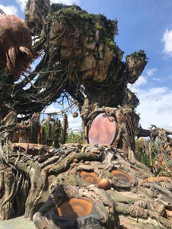 Best part of whole theme park