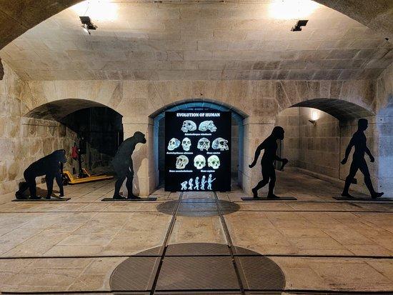 Alfandega Porto Congress Centre: Museu dos Transportes e Comunicações - Exposição CORPO HUMANO A Ciência da Vida