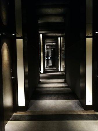 Lobby and corridor