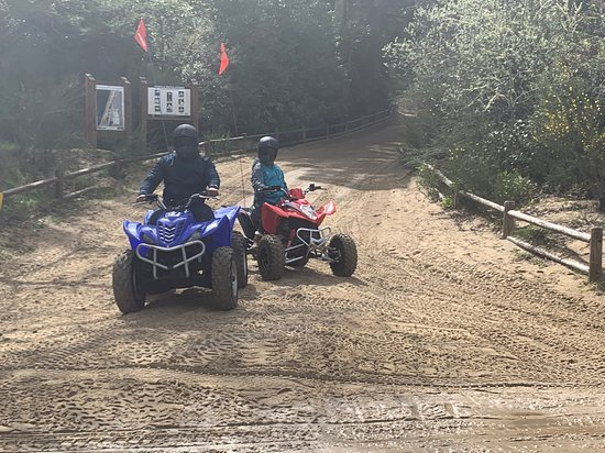 spinreel dune buggy and atv rentals and tours tenmile or