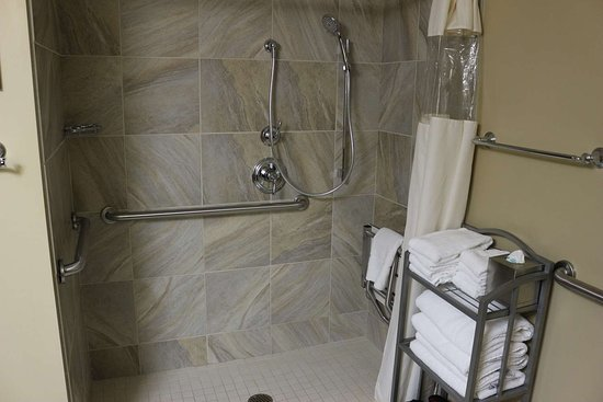 Best Western Plus Traverse City: Accessible Bathroom