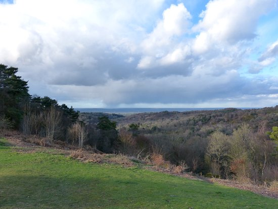 ‪Hindhead Commons and the Devil's Punch Bowl‬