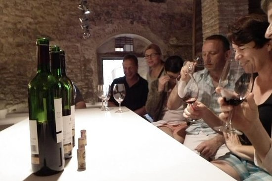 Private Wine and Oil Tour in the...