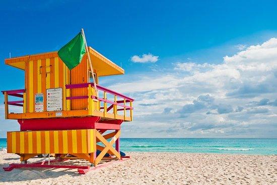 Miami Day Trip og Florida Everglades...