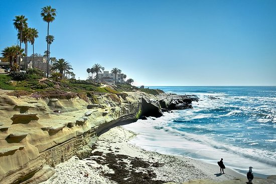 La Jolla og San Diego Strender Tour